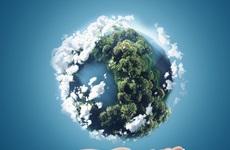 Nueva resolución de los empaques ecológicos