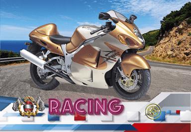 6613 BOLSILLO MOTOS 2021 v2 24