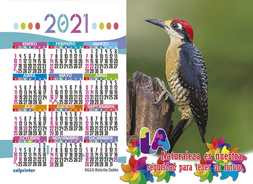 BOLSILLO DOBLE 2021 V2 16