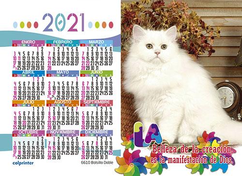 BOLSILLO DOBLE 2021 V2 17