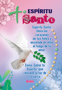 6607 BOLSILLO SANTOS 2022 v1 16
