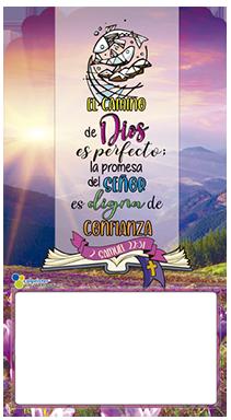 DOCEAVO SALMOS 03