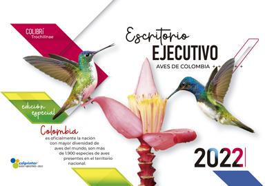 ESK EJECUTIVO 2022 01
