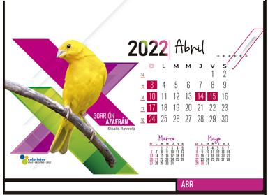ESK EJECUTIVO 2022 08