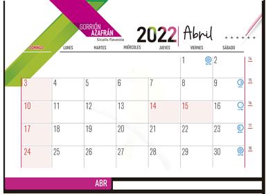 ESK EJECUTIVO 2022 09