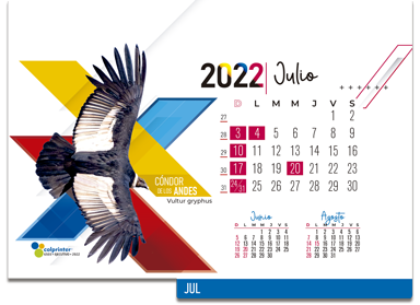 ESK EJECUTIVO 2022 14
