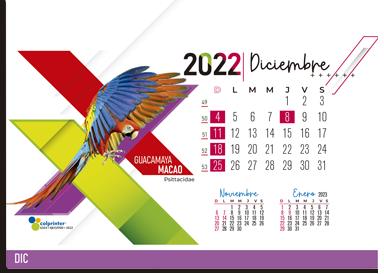 ESK EJECUTIVO 2022 24