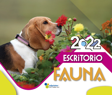 ESK ESPECIAL 2022 13