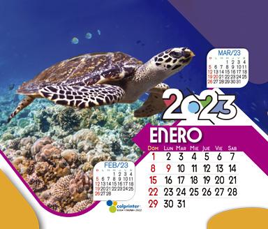 ESK ESPECIAL 2022 15