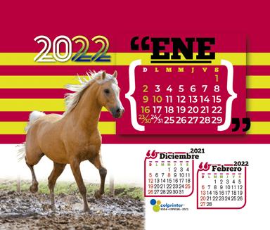 ESK ESPECIAL 2021 v2 13