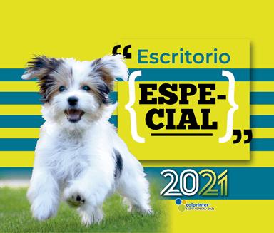 ESK ESPECIAL 2021 v2 15
