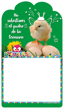IMANTADO FAUNA 05