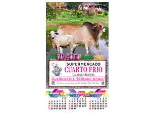 CARNES OCTAVO CARTON 6212 01