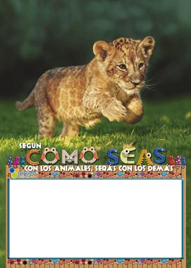 FAUNA OCTAVO PAPEL 6215  2021 V1 02
