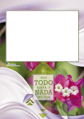 RESPALDO TACO 2021 v1 08