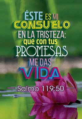 BLS SALMOS 2021 V2 04