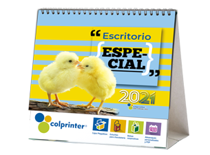 DUMMIE ESCRITORIO ESPECIAL 2021